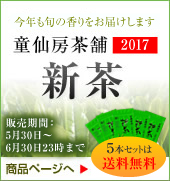 2017新茶 インターネット特別価格