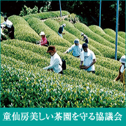 童仙房美しい茶園を守る協議会