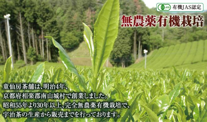 有機JAS認定 無農薬有機栽培|童仙房茶舗は、明治4年、京都府相楽郡南山城村で創業しました。昭和55年より完全無農薬有機栽培法を採用し、宇治茶の生産から販売までを行っております。