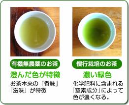 有機無農薬栽培と、そうでないお茶の比較写真